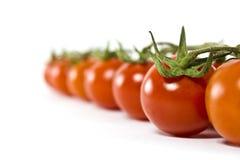 Os tomates de cereja alinharam um atrás do outro Imagem de Stock