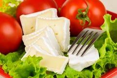 Os tomates e as fatias do queijo encontram-se em uma folha da salada fresca na placa Fotografia de Stock Royalty Free