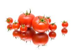 Os tomates fecham-se acima com reflexão no fundo branco Imagem de Stock