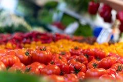 Os tomates fecham-se acima e pimentas no fundo imagens de stock