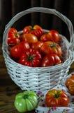 Os tomates maduros e verdes frescos estão na cesta fotos de stock