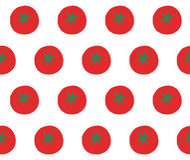 Os tomates modelam no vetor branco Imagens de Stock Royalty Free