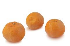 Os três mandarino no fundo branco Imagem de Stock