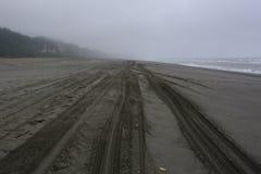 Os traços da roda na areia, ouro blefam a praia Califórnia imagem de stock royalty free