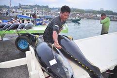 Os trabalhadores estão carregando o atum no caminhão à fábrica do marisco na cidade de General Santos Fotografia de Stock Royalty Free