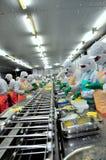 Os trabalhadores estão trabalhando duramente em uma linha de produção em uma fábrica do marisco na cidade de Ho Chi Minh, Vietnam Fotos de Stock