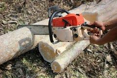 Os trabalhadores estão usando árvores de um sawing da serra de cadeia Fotografia de Stock Royalty Free
