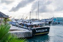 Os turistas caucasianos no barco preto da excursão da baía da estrada do garanhão no grupo do boatyard desatam cordas dos postes  foto de stock