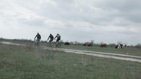 Os turistas do ciclismo montam na estrada na perspectiva das vacas vídeos de arquivo