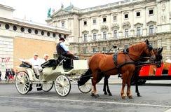 Os turistas idosos montam em um treinador de passeio e escutam um cocheiro-guia Imagens de Stock Royalty Free