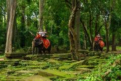 Os turistas montam elefantes no templo de Bayon, Camboja fotografia de stock royalty free