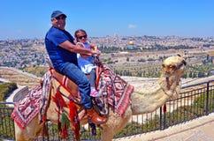 Os turistas montam um camelo contra a cidade velha do Jerusalém, Israel foto de stock