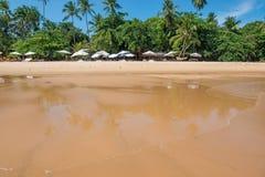 Os turistas que apreciam a praia grandioso do barra em Ponta fazem Muta imagem de stock royalty free