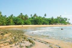 Os turistas que apreciam a praia grandioso do barra em Ponta fazem Muta fotografia de stock