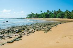 Os turistas que apreciam a praia grandioso do barra em Ponta fazem Muta foto de stock