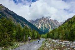 Os turistas vão em uma estrada da montanha da floresta fotos de stock