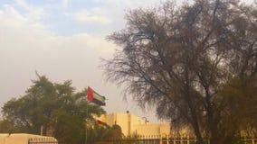 Os UAE embandeiram a ondulação na cidade bonita da cidade de Al Ain