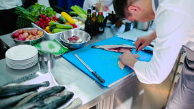 Os unbones do cozinheiro chefe a faixa dos peixes vídeos de arquivo