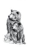 Os ursos ilustração do vetor