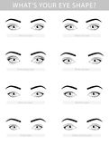 Os vários tipos de mulher eyes, grupo do vetor ilustração do vetor