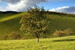 Os vales Yorkshire do leste Inglaterra Fotografia de Stock