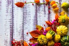 Os vegetais do fundo do ajuste da tabela do fundo da queda do outono frutificam fotos de stock royalty free