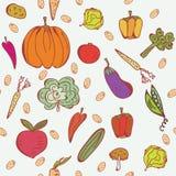 Os vegetais doodle o teste padrão sem emenda Foto de Stock