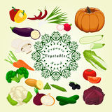 Os vegetais maduros ilustração royalty free