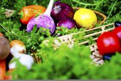 Os vegetais maduros diferentes no vime chapeiam a grama Alimentos saudáveis Fotos de Stock