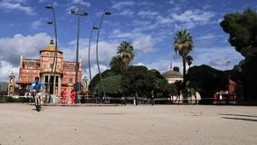 Os vencedores da maratona xxiv de Palermo video estoque