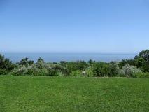 Os verdes no litoral Fotografia de Stock Royalty Free
