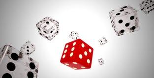 Os vermelhos e o branco cortam a queda Fotografia de Stock Royalty Free