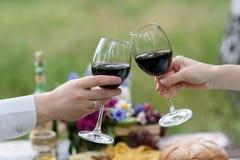 Os vidros de vinho Fotografia de Stock Royalty Free