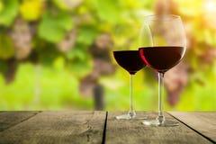 Os vidros de vinho tinto serviram nas pranchas de madeira, vinhedo no fundo Imagem de Stock Royalty Free