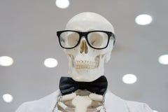Os vidros vestindo do esqueleto e um laboratório branco revestem imagens de stock