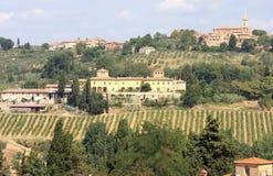 Os vinhedos aproximam o d Elsa de Barberino Val, Italy foto de stock royalty free