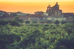 Os vinhedos no distrito de Nieva Segovia, Espanha Vinhos brancos das uvas as mais de alta qualidade, pertencendo à designação de  imagem de stock