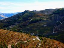 Os vinhedos Terraced formam os montanheses do ` s Douro River Valley de Portugal foto de stock