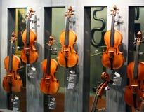 Os violinos os mais famosos Fotografia de Stock