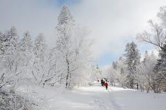 Os visitantes no snowfield foto de stock royalty free