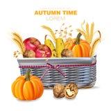 Os withpumpkins e os frutos de Autumn Basket Vector ilustrações realísticas do projeto detalhado ilustração royalty free