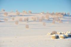 Os yurts Foto de Stock