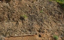 Osadowej skały warstwy na falezie zdjęcie royalty free