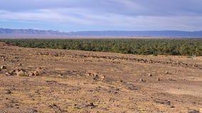 Osais nel Marocco Fotografia Stock