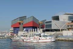 Osaka Aquarium Royalty Free Stock Photo