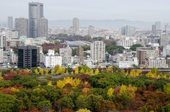 Osaka. Autumn leaf color changed and Skyscrapers in Osska,Japan Royalty Free Stock Images