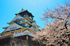 Osaka Castle. With sakura in Osaka Japan on a sunny day in Spring royalty free stock photos