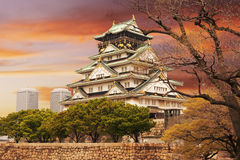 Osaka Castle Fotos de Stock Royalty Free
