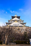 Osaka Castle Fotos de Stock Royalty Free