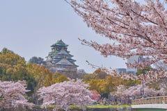 Osaka Castle bonito com Cherry Blossom Imagem de Stock
